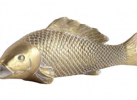 gouden vis
