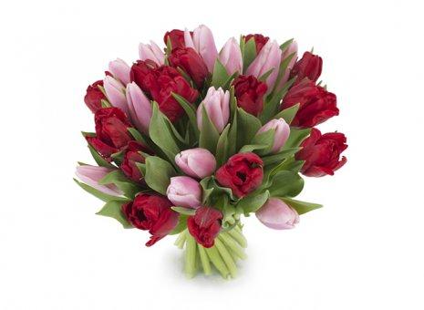 Boeket tulpen roze rood