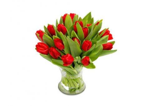 Boeket tulpen rood