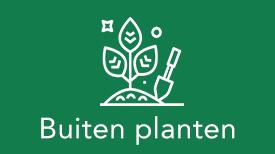 Buiten planten