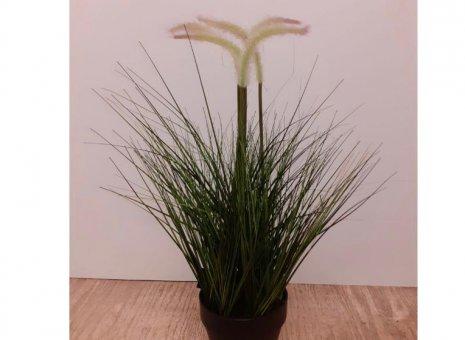 Pennisetum kunstplant