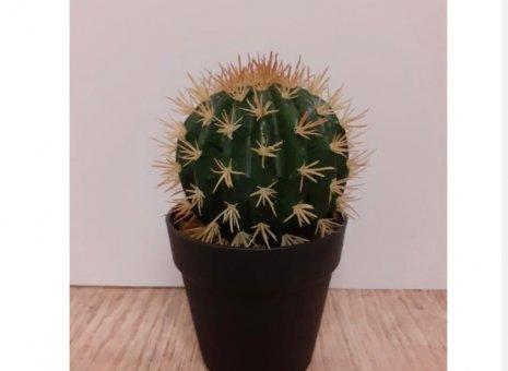 Cactus kunstplant