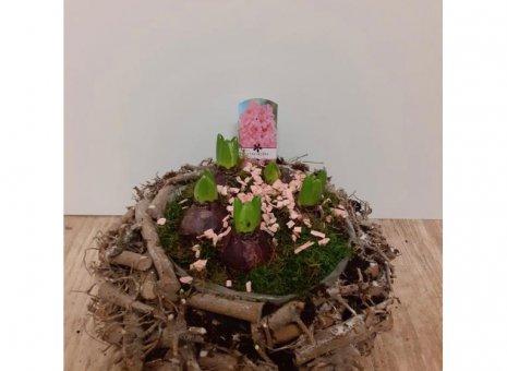 plantenarrangement Hyacint